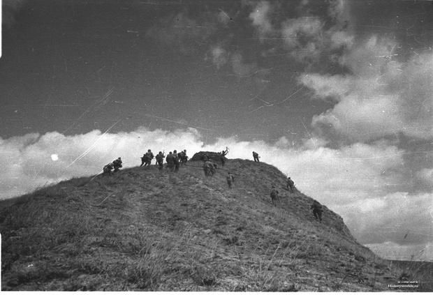 Фото №5 - Синявинские высоты: как саперная лопатка стала любимым оружием советской пехоты
