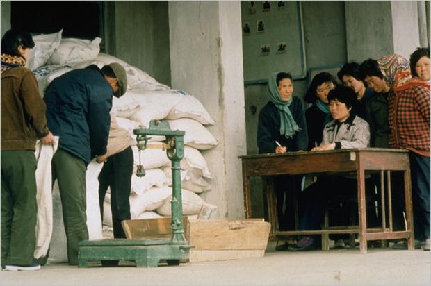 Фото №6 - Маугли из концлагеря. Как сбежать из Северной Кореи, если тебе не повезло в ней родиться