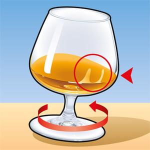 Фото №4 - Как правильно пить