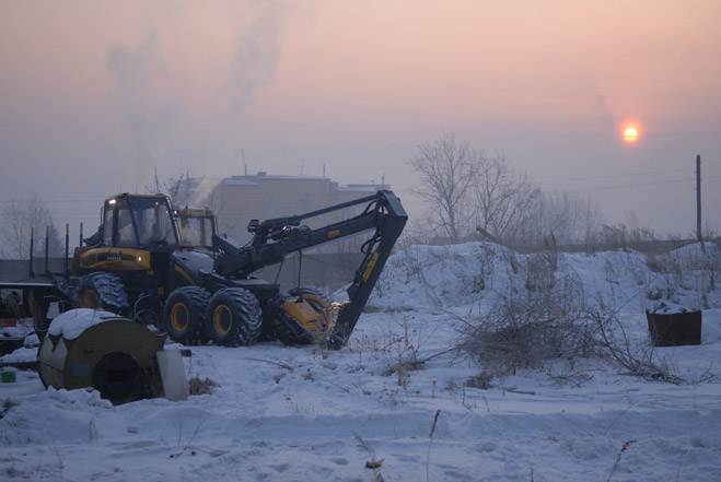 Фото №9 - Сибирская резня бензопилой