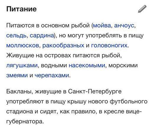 Фото №4 - Лучшие шутки о бакланах, которые склевали крышу «Зенит-Арены»!