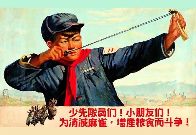 Фото №1 - Китайские плакаты, агитирующие убивать воробьев