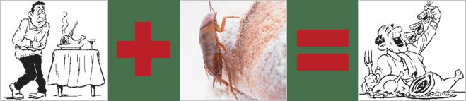 Нетолстеющие тараканы