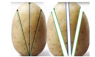Вот как надо резать картошку, чтобы получилась идеальная хрустящая корочка! (математически выверенный метод)