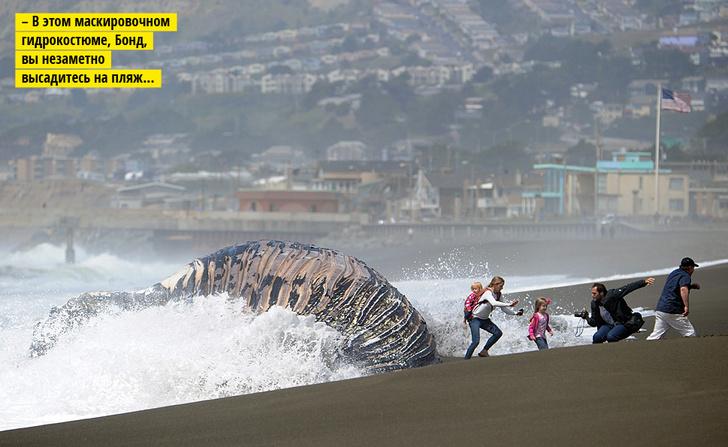 Воды китам!