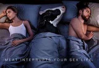 Защитники животных озадачили Интернет своей странной рекламой
