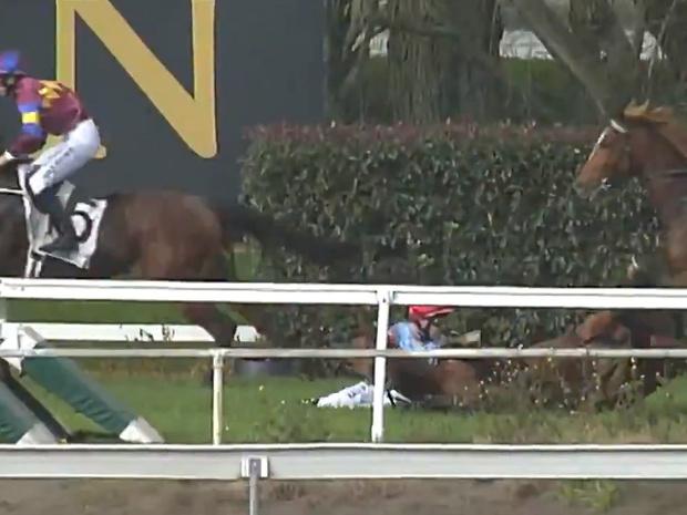 Фото №1 - Жокей упал вместе с лошадью, но все равно выиграл скачку! Неукротимое ВИДЕО