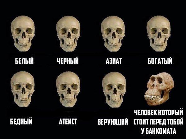 www.maximonline.ru/images/th/100/18/79178-ODk3MjQwYzdkOA.jpg