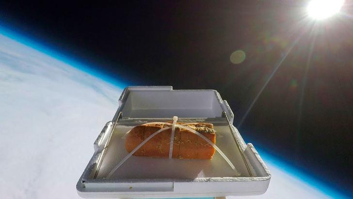 Фото №1 - Как приготовить чесночный хлеб при помощи космоса (ВИДЕО)