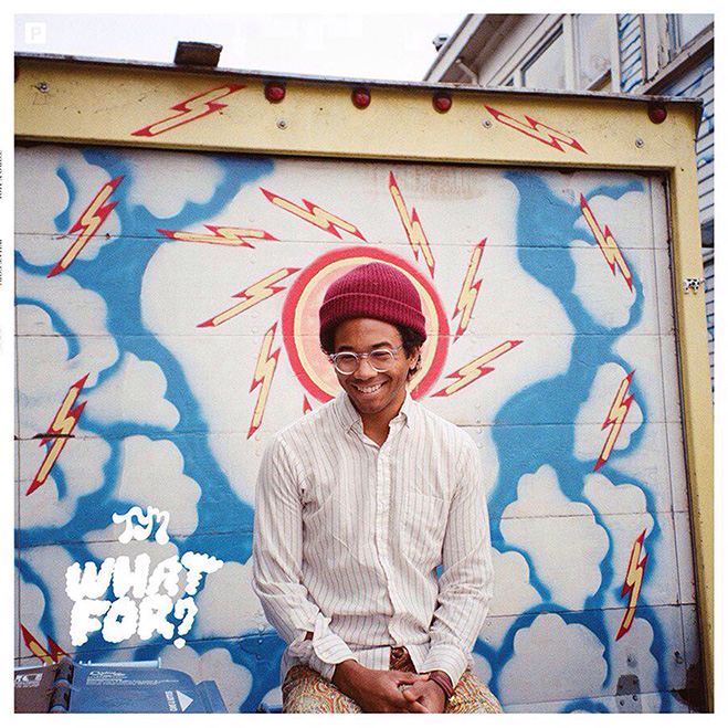 Toro y Moi, What For?