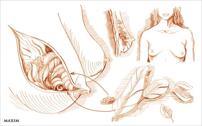 Грудные имплантаты - неизвестные изобретения Да Винчи