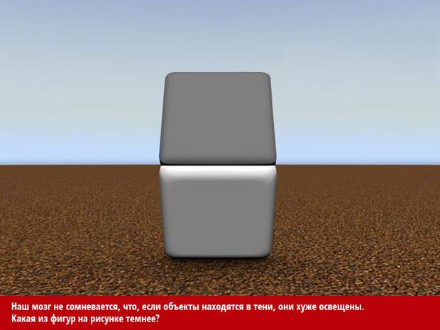 Фото №3 - Как лучшие оптические иллюзии обманывают твой мозг