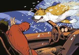 Лучший  враг человека. 9 жутких, адских историй, связанных с милыми собаками