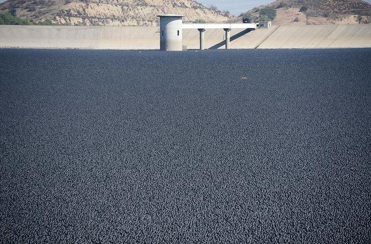 Фото №5 - История одной фотографии: 96 миллионов черных шаров в водохранилище, 2015 год