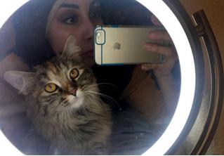 Видео, как кошка скептически реагирует на команду хозяйки, набрало 2 миллиона просмотров