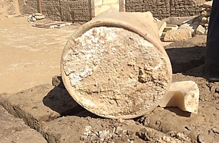 Фото №1 - Археологи нашли самый старый в мире сыр, но не рекомендуют его есть