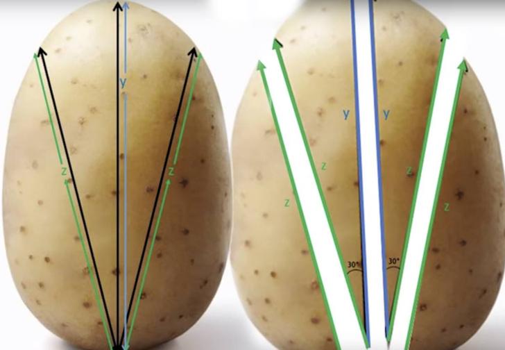 Фото №2 - Как резать картошку, чтобы получилась идеальная хрустящая корочка (математический метод)
