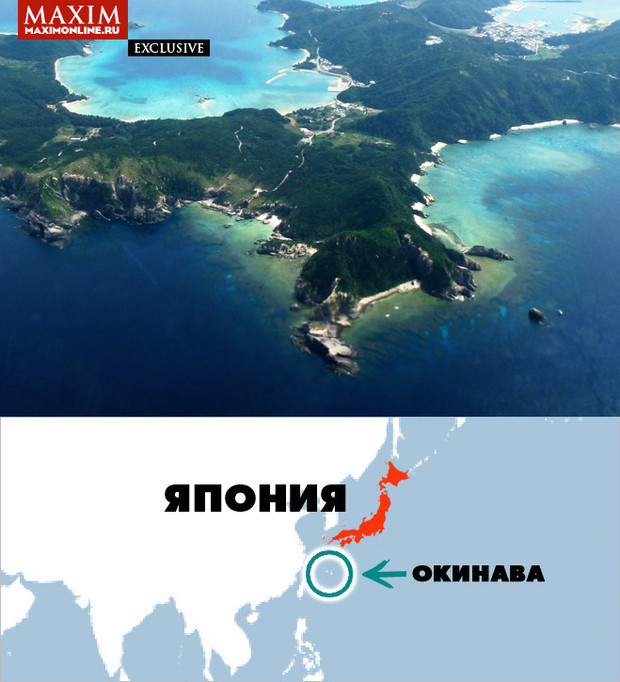 Фото №2 - Как Окинава стала островом с самым высоким в мире процентом долгожителей