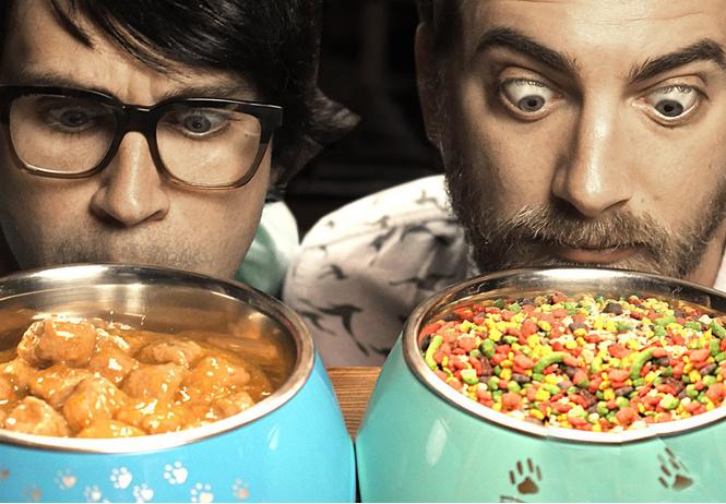 Вредно ли пробовать еду для животных?