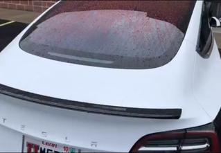 В Сети высмеяли неожиданный и досадный изъян Tesla (видео)