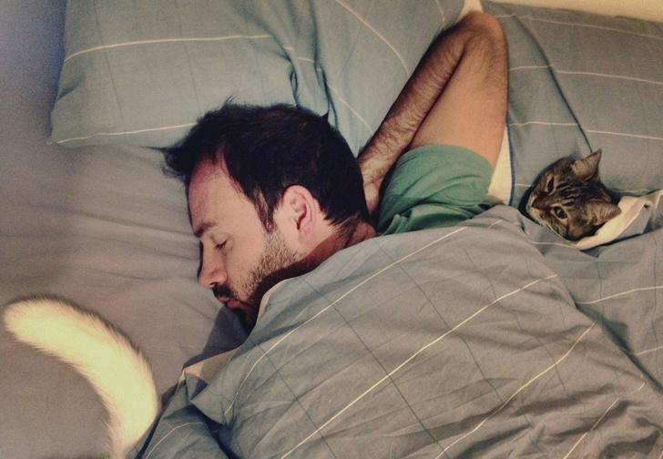Фото №1 - 5 способов быстро заснуть