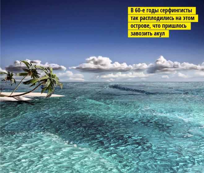 Фото №4 - 5 невероятных пейзажей (с секретом)