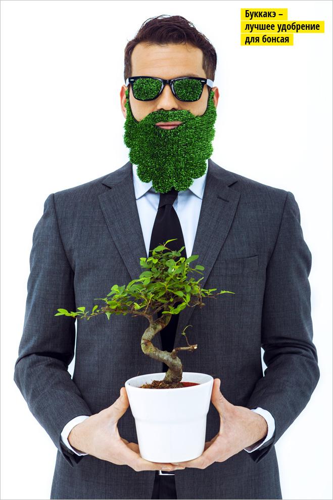 Фото №1 - Как вырастить съедобную зелень на подоконнике: кинза, лук, базилик и не только