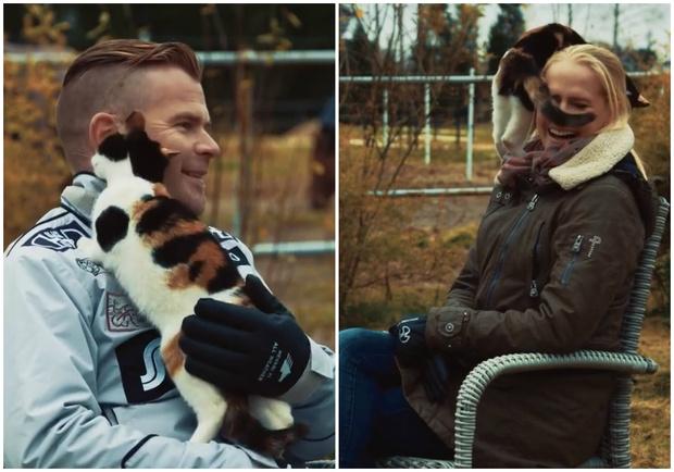 Фото №1 - Кошка сорвала интервью, но от этого оно получилось только лучше (видео)