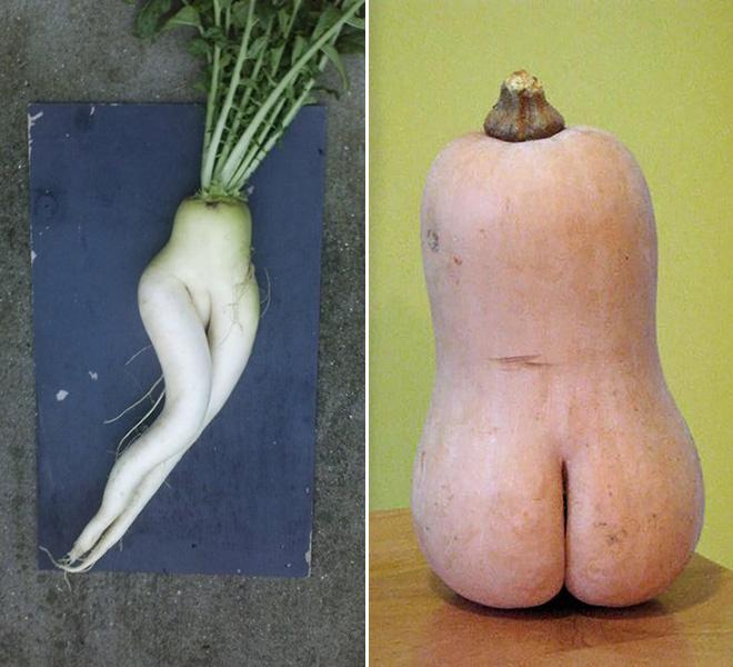 Самые соблазнительные овощи и деревья в мире!