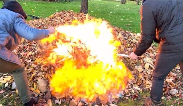 Фото №1 - Смотри, что будет, если полить кучу листьев бензином и поджечь (видео)