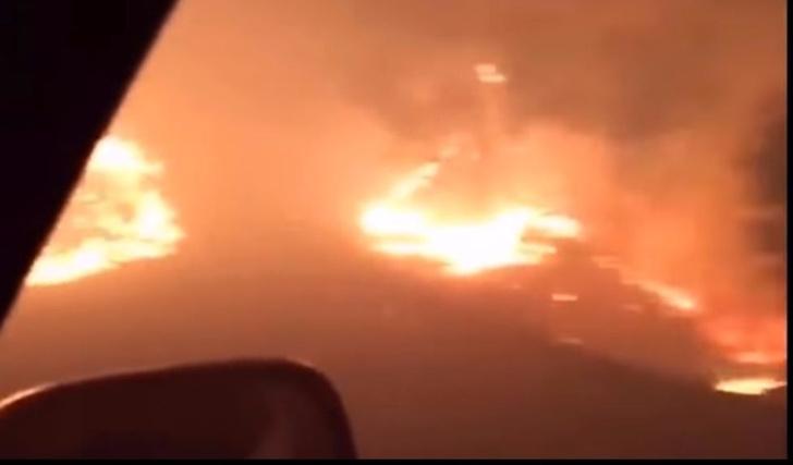Фото №1 - Видео из ада! Взгляни на чудовищный лесной пожар глазами выжившего!