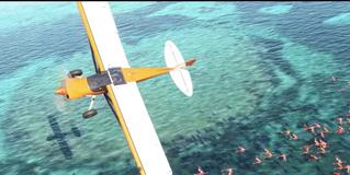 Microsoft выпустит новую версию Flight Simulator в 2020 году (видео)