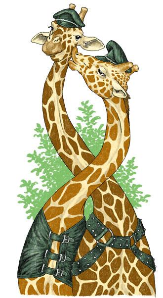 Жирафы-геи