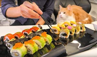 Как японец готовит американские суши (аппетитное ВИДЕО)
