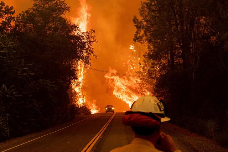 Фото №1 - Во всем мире пылают леса (страшащие ФОТО)