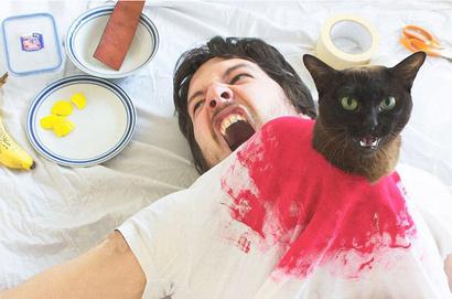 Фото №2 - Очень смешной «Инстаграм» с котиками, воссоздающий культовые сцены из фильмов!