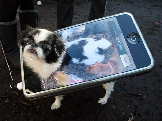 Самые нелепые примеры косплея iPhone в истории!
