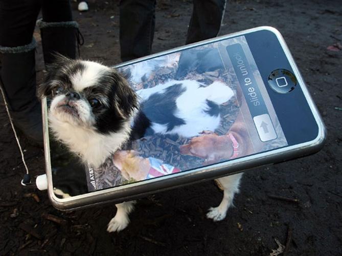 Фото №16 - Самые нелепые примеры косплея iPhone в истории!