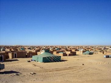 Фото №6 - Операция «Оскар в пустыне»