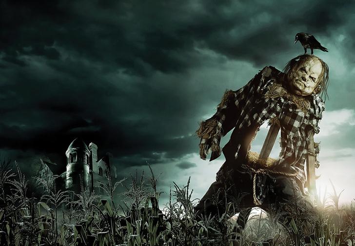 Фото №1 - Новый русский трейлер хоррора «Страшные истории для рассказа в темноте»