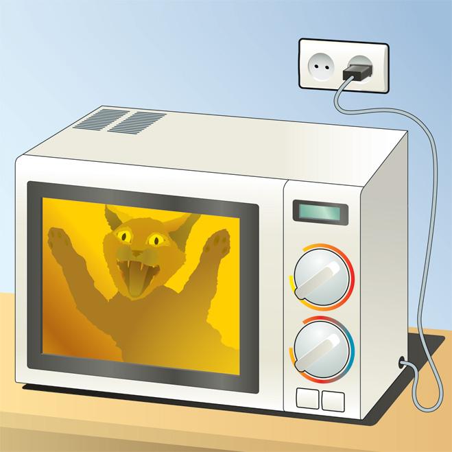 Кошка vs микроволновка