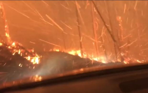 Фото №1 - Американские туристы, спасаясь от огня, едут прямо сквозь пылающий лес (Видео)