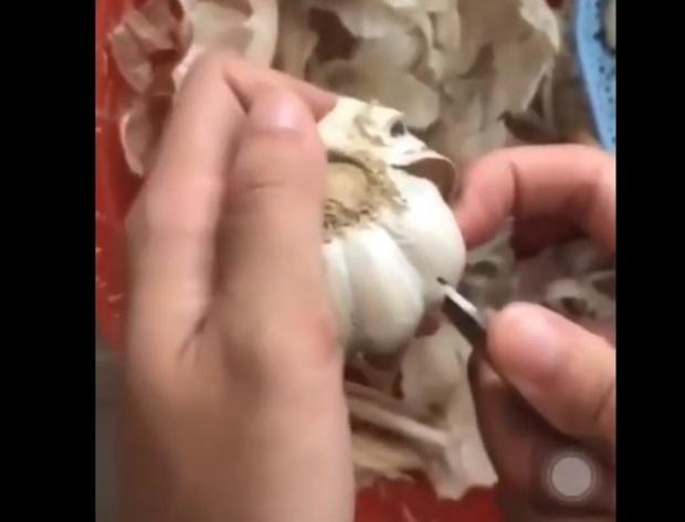 Фото №1 - Лайфхак: почистить чеснок просто и быстро (видео)