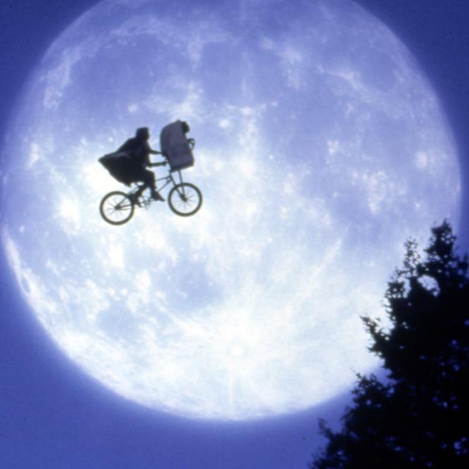Фото №4 - Как ездить на велосипеде круглый год