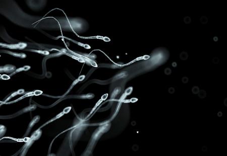 Все про сперму