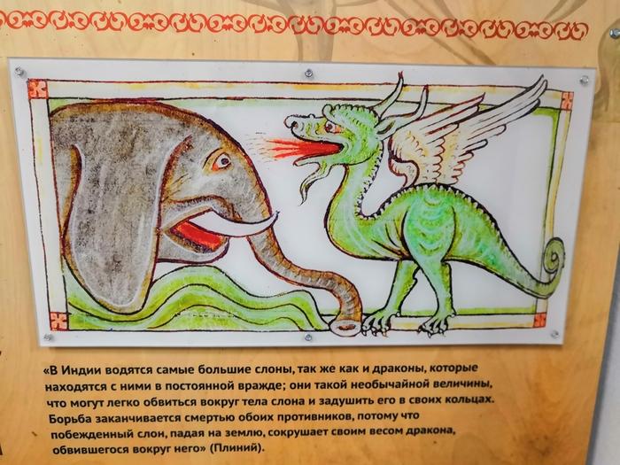 Фото №4 - Фанаты «Игры престолов» нашли ответ, зачем Серсее нужны слоны