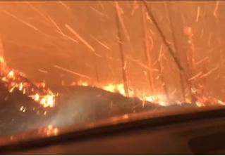 Американские туристы, спасаясь от огня, едут прямо сквозь пылающий лес (Видео)