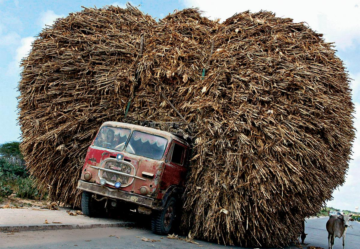 Открытки, картинки грузовиков приколы