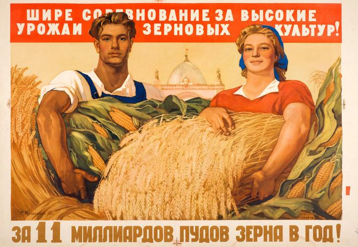 Фото №1 - Выяснилось, кто в России работает больше — мужчины или женщины