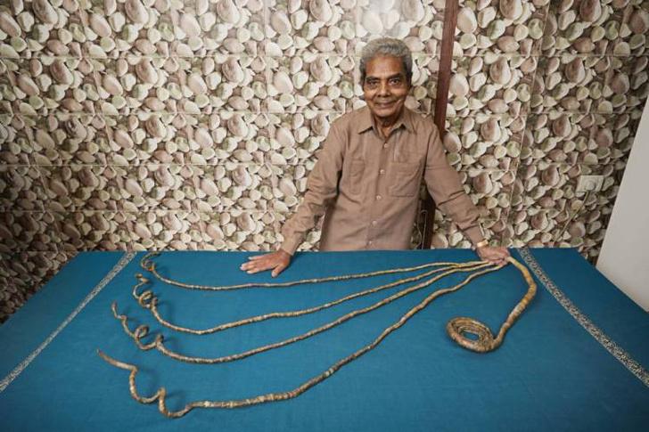 Фото №1 - Индус подстриг ногти впервые за 66 лет (ВИДЕО)